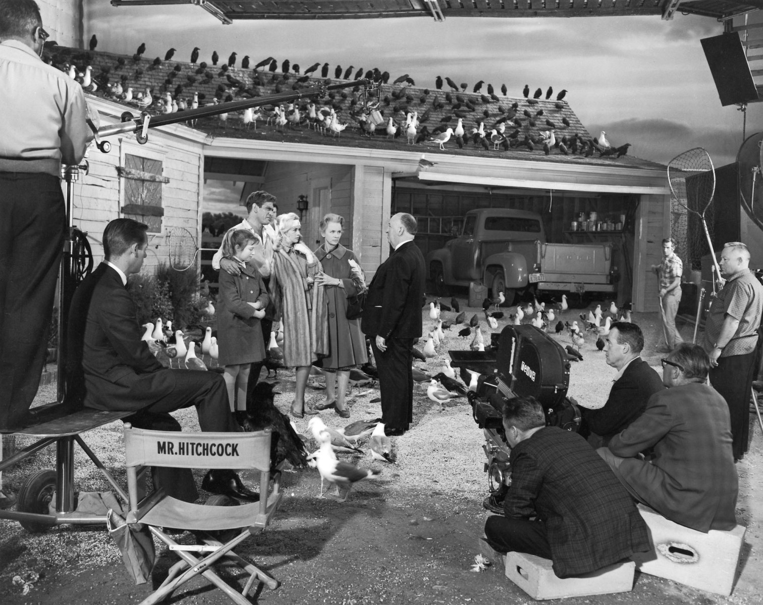 A Beautiful Image From The Movie The Birds (1963) Behind the Scenes