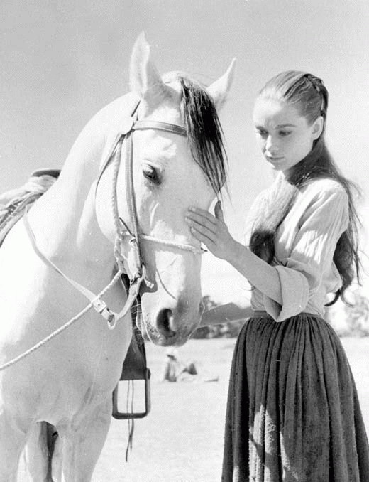 Beautiful Audrey with a Horse Behind the Scenes