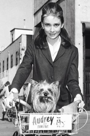 Audrey with Mr. Famous