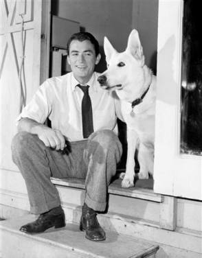 Gregory and the Dog