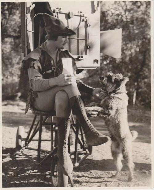 Robin Hood and the Dog Behind the Scenes