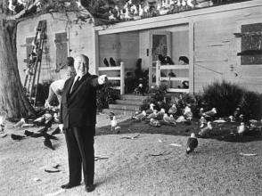 From the Film The Birds (1963) - Behind the Scenes photos