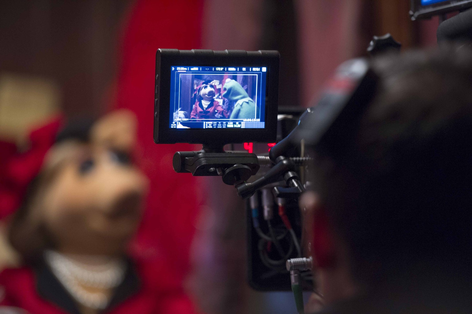 The Muppets Behind the Scenes