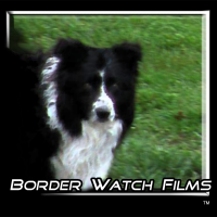 BorderWatchFilms